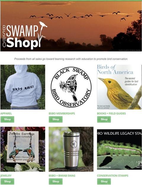 Swamp Shop  2