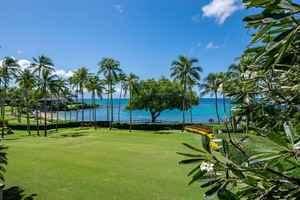 Coconut Grove 2