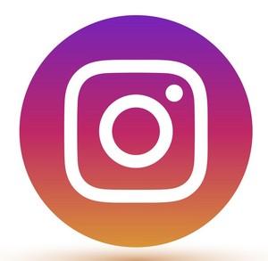 instagram-logo-icon-vector-29228004 (2)