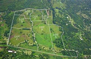 hana plantation
