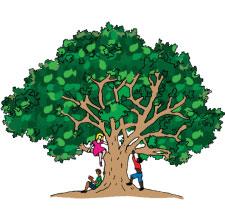 tree-top-academics