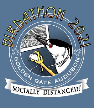 birdathon2021 2
